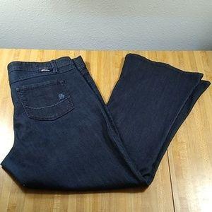 Torrid Source of Wisdom Label Jeans Size 16